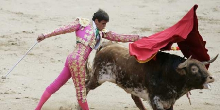 Ban Bull Fighting in European countries now