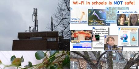 Weltweites Verbot von WLAN-Geräten und Mobilfunksendern in, auf und neben Wohnhäusern, Schulen und Krankenhäusern.