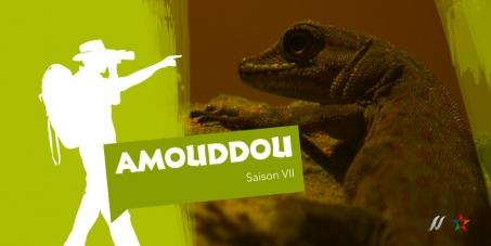 Tous pour le maintien de 'Amouddou'