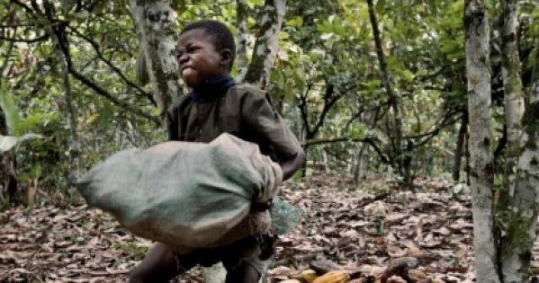 KINDERARBEIT: Schoko-TÜV JETZT! Kakaopreis-Spekulation STOPPEN! Neue Regierung muss Wort halten!