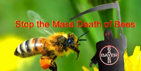 Global ban of pesticide killing millions & millions of bees