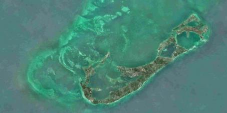 Save Bermuda's ocean paradise
