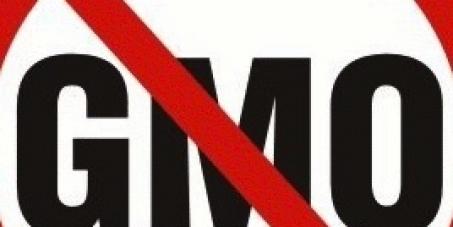 GMO-free Ecuador!