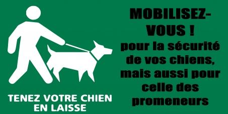 Au maire de Strasbourg: Contrôles quant à l'obligation de promener son chien en laisse à Strasbourg