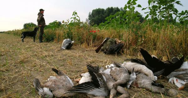 GEEN jagers op de Landelijke SOVON dag