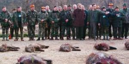 Stop Romanian Annual Hunting party by Tiriac!