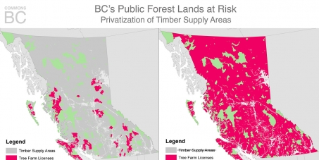 Stop mass privatization of British Columbia's forests by voting against Section 24, Bill 8.