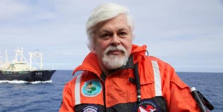 Liberemos a Paul Watson de la persecución de las Mafias de la Pesca Ilegal