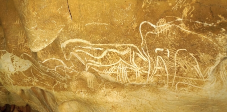 To the friends and the benefactors of the discoverers of the CHAUVET Cave : a financial support