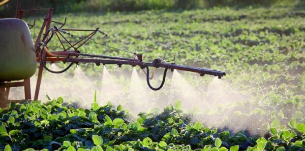 Opriti otravirea romanilor si a mediului cu pesticide neonicotinoide