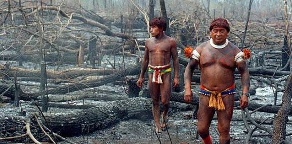 Para a Presidente Dilma Rousseff: Parem o Genocídio dos Povos Indígenas no Brasil-PEC 215 Não!