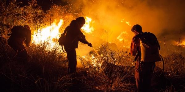 Eugênio Splenger Secretário de Meio Ambiente do Estado da Bahia: Faça o monitoramento de Incêndios florestais na Chapada