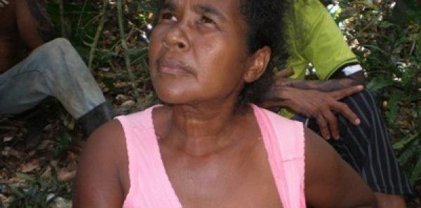 Präsidentin Dilma und Justizminister Cardoso: Wir fordern das Recht auf Land für die Tupinambá!