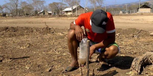 Wasser für Tamaquito: BITTE ENGLISCHE VERSION UNTERZEICHNEN!!!