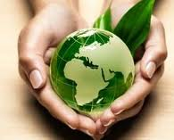 Συνέργεια, ΟΧΙ ΚΛΕΙΣΙΜΟ των Περιβαλλοντικών Σχολών της Δυτικής Μακεδονίας