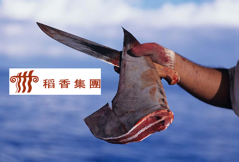 Tao Heung Restaurant in Hong Kong: STOP selling shark fin soup!